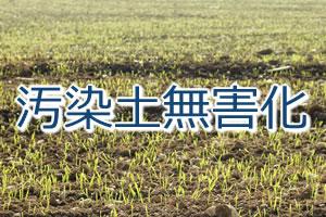 汚染土壌無害化