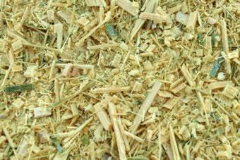 竹の粉砕チップ