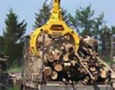 木材を持ち上げるグラップル
