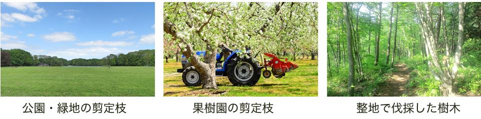 公園・緑地の剪定枝・果樹園の剪定枝整地で伐採した樹木・