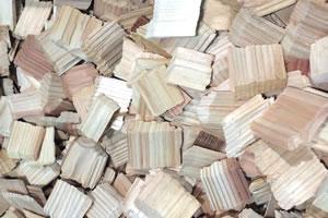 木質バイオマス発電・バイオガス発電
