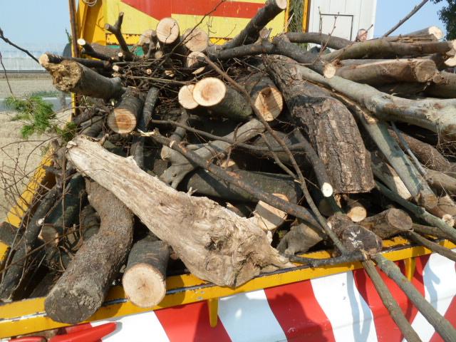 造園で発生する大量の剪定枝 保管場所・処分費にお困りでした