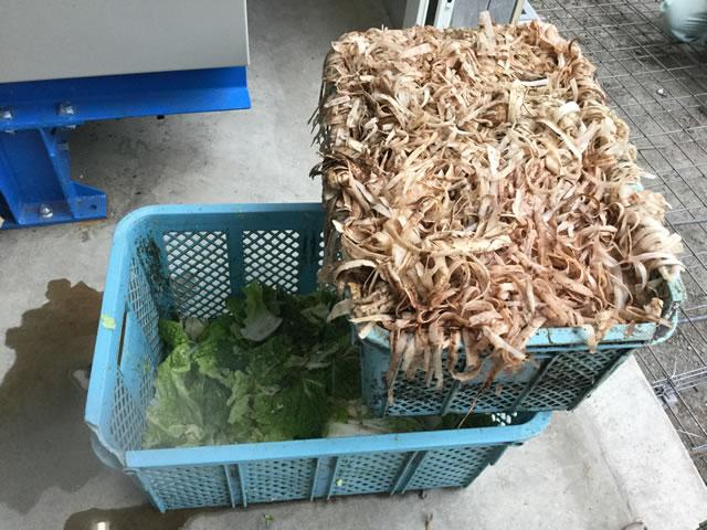 玉ねぎや大根の皮、キャベツの外葉などが1日約4トン発生
